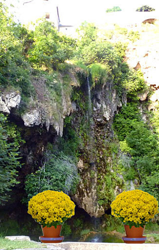 chrysantheme-cascade