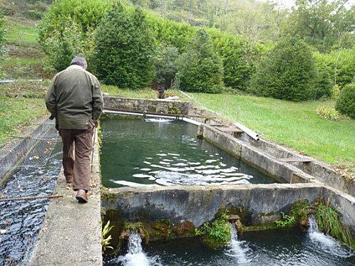 gourjan-bassins
