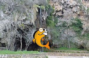 poisson-cascade