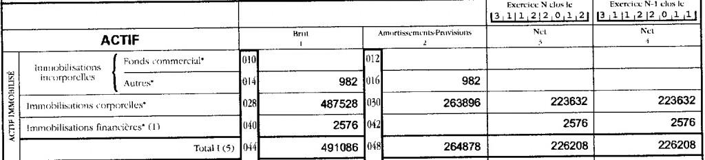 actif-immobilise-identique-2009-2012