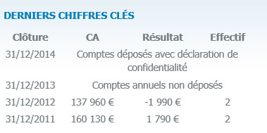 infogreffe-comptes-2013
